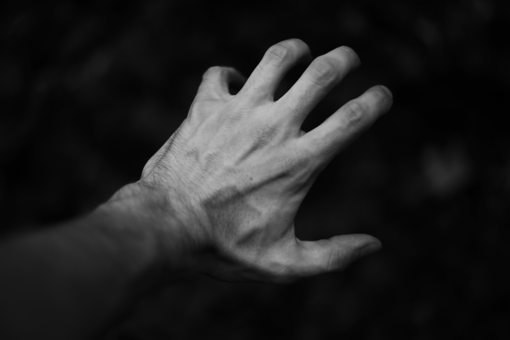 Portrait of a Hand