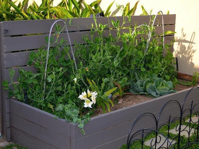 Planter Boxes Harwell Design Fences Driveway Gates