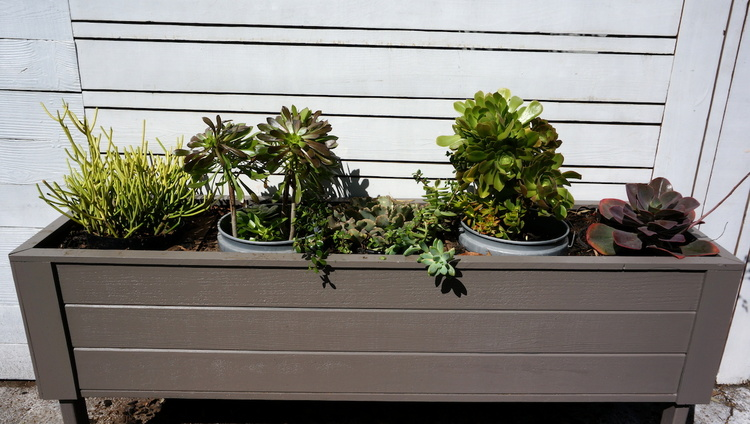 horizontal+planter+box.JPG