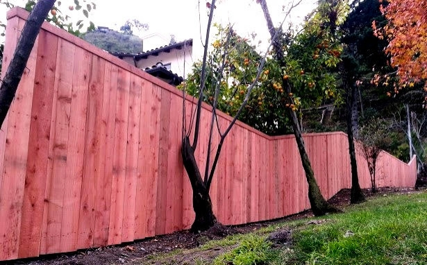 Conheart Redwood - Santa Monica fence.jpg