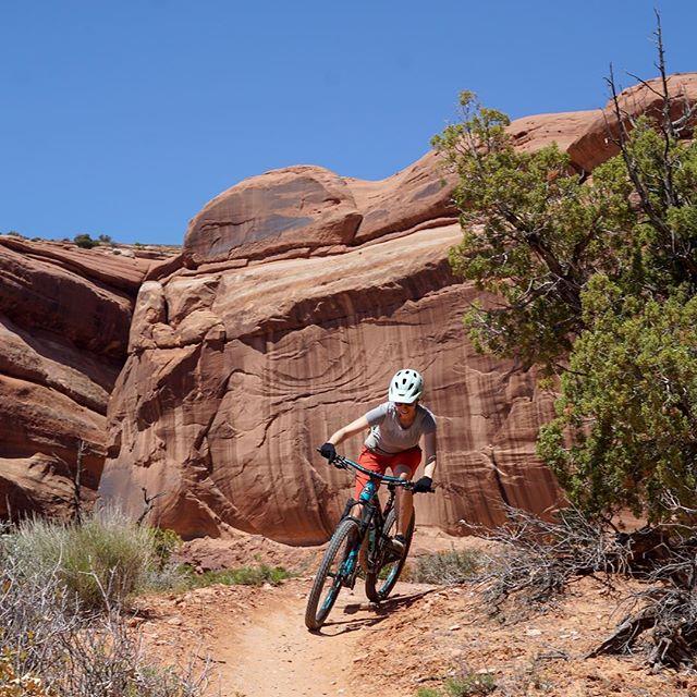 Monday is best when it includes bike rides with @karmaletta  #desert #desertdreams