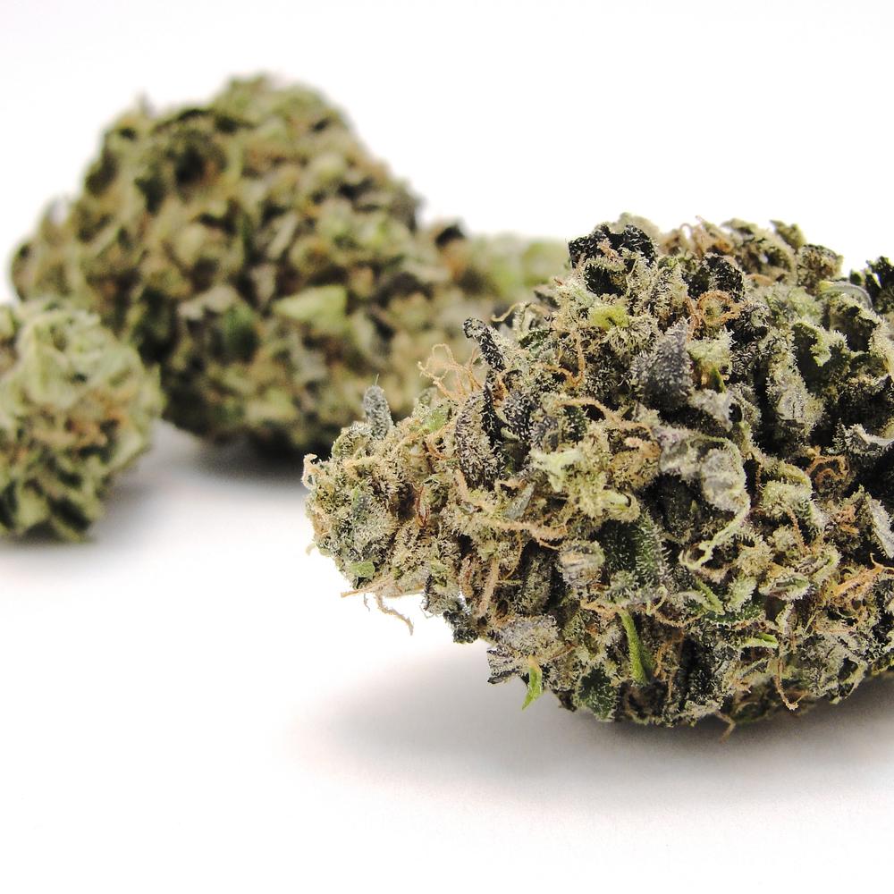 blueberry-yum-yum.jpg
