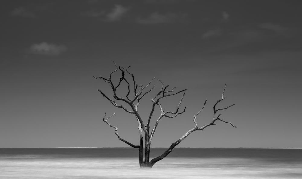 SouthCarolina-4.jpg