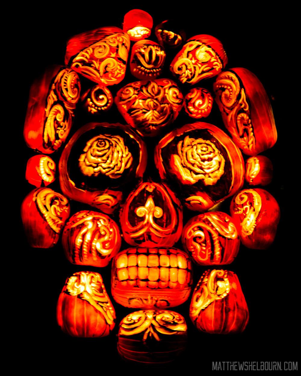 IMG_2594_October_10,_2015_Web.jpg