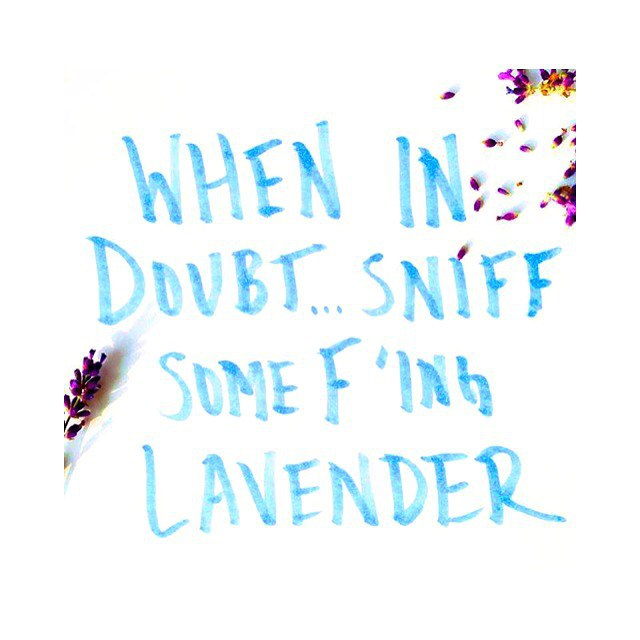 ::|| #lavender cures ALL ... & so does the weekend ||:: #TGIF #VLTAforall #ecobeauty