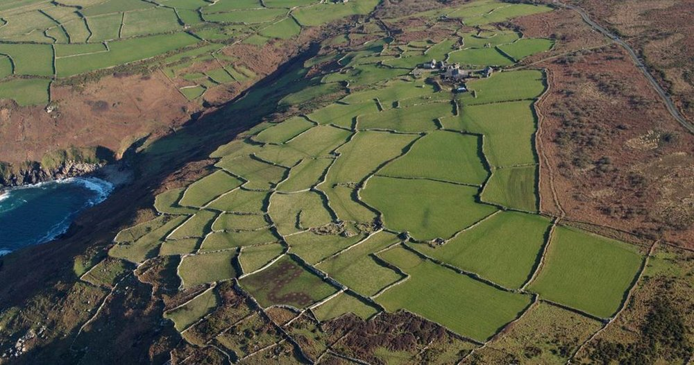 Cornish hedges are a vital ingredient of what makes the Cornwall AONB landscape so special