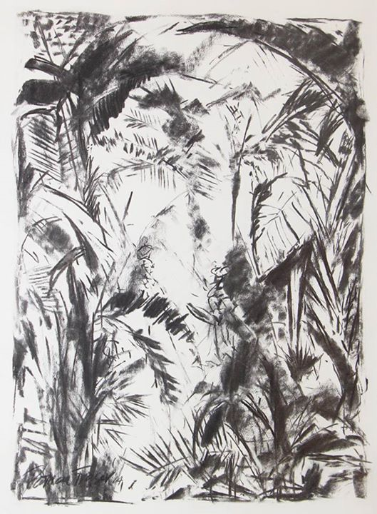Foilage   Charcoal on Paper   51,5 x 37cm