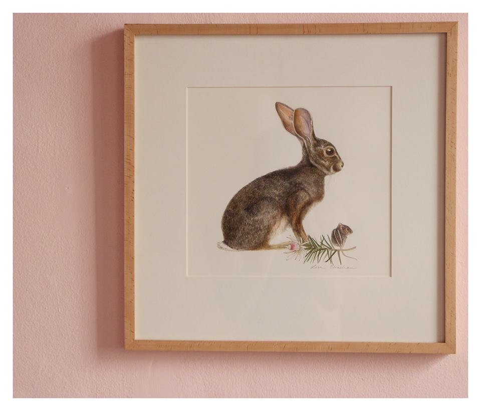 Lisa Strachan  Scrub Hare and Striped Mouse with Protea  Watercolour on Paper 26 x 28 cm R 13 000 SOLD