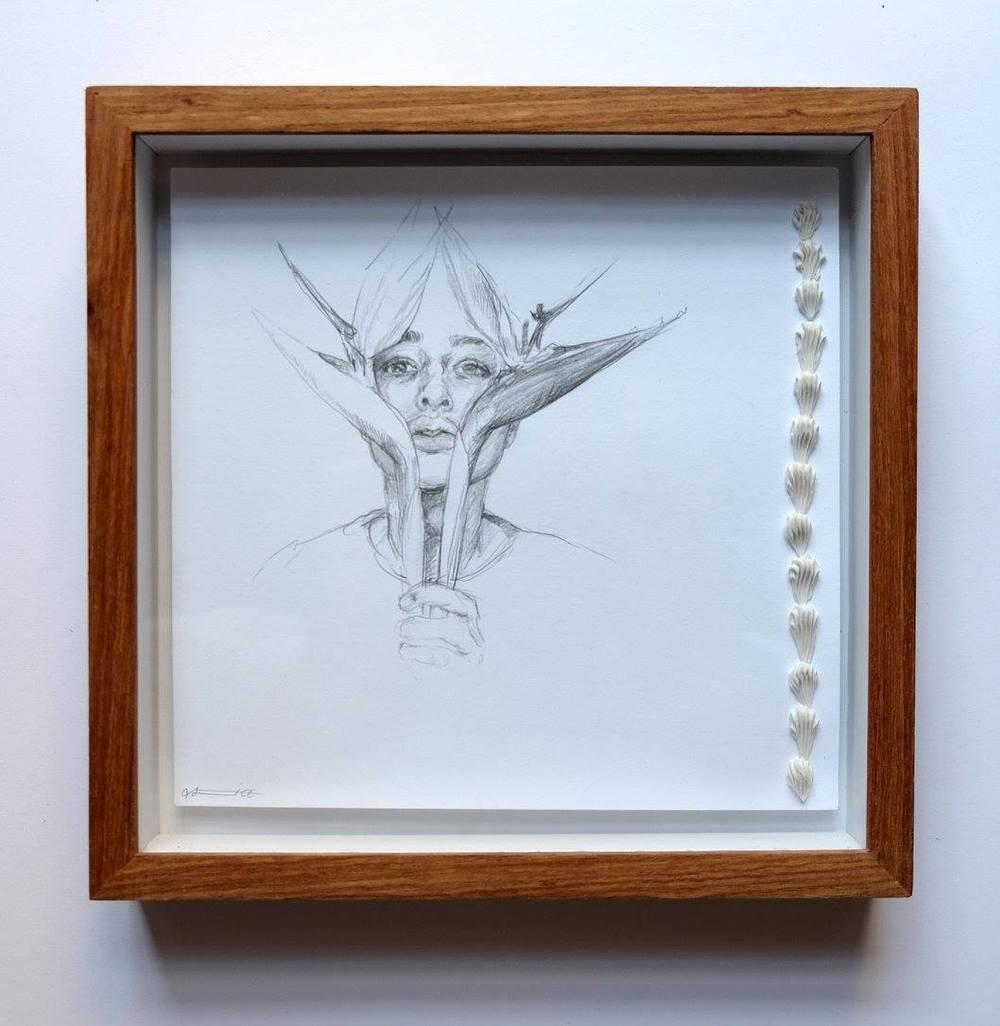 Alice Toich    Toichlitzia    Pencil on Paper    17 x 17 cm  R 1 250
