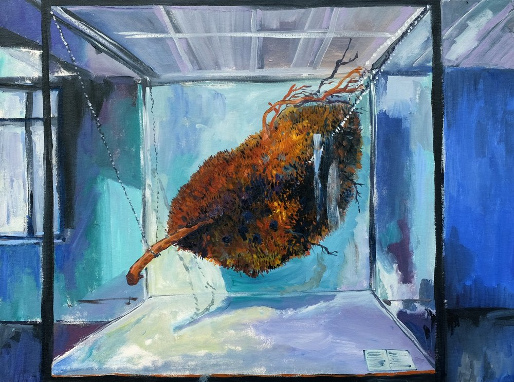'Nest of the Sociable Weaver'
