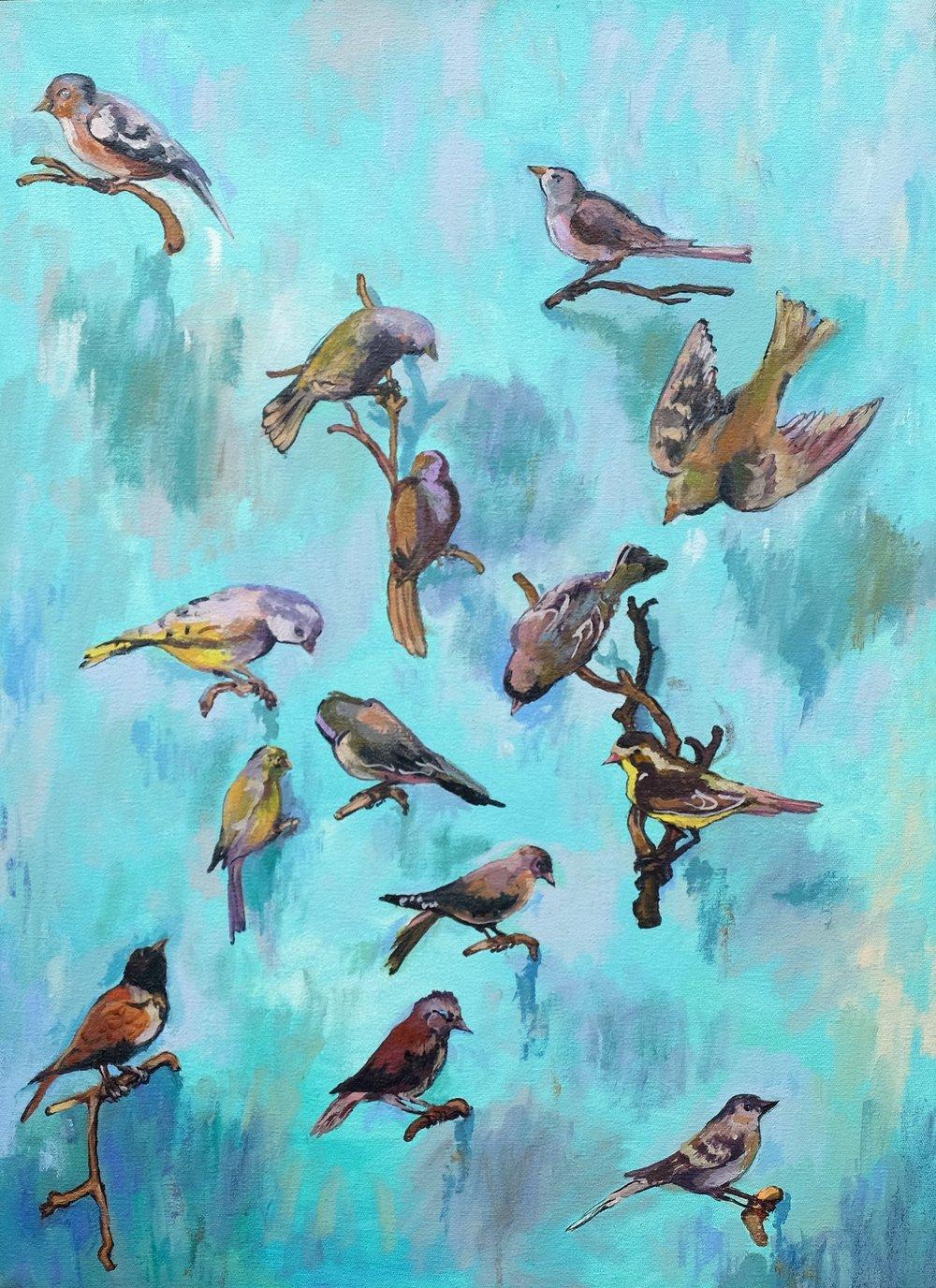 'Very Canary'