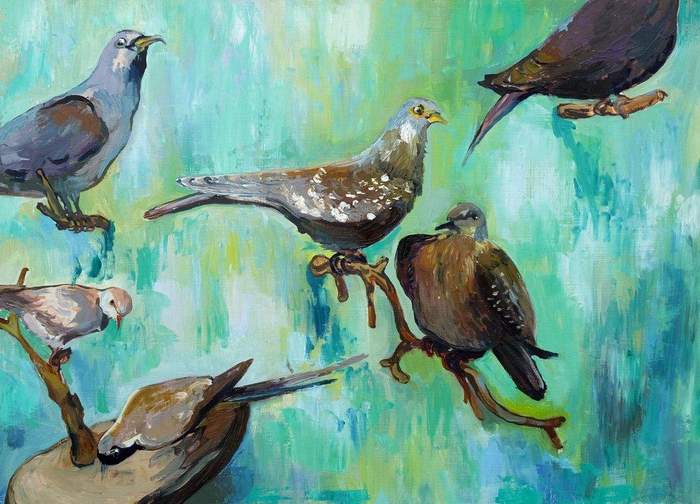 'Love Doves'