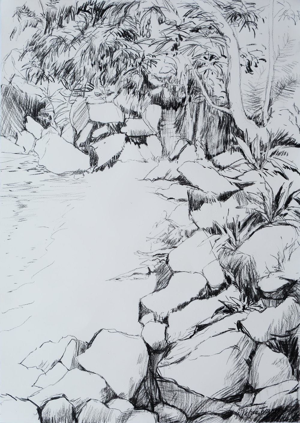 THE BATHERS  71 x 50cm Charcoal on Fabriano R 8 200