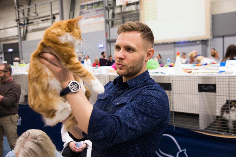 05-Kattenshow hilversum-7855.jpg