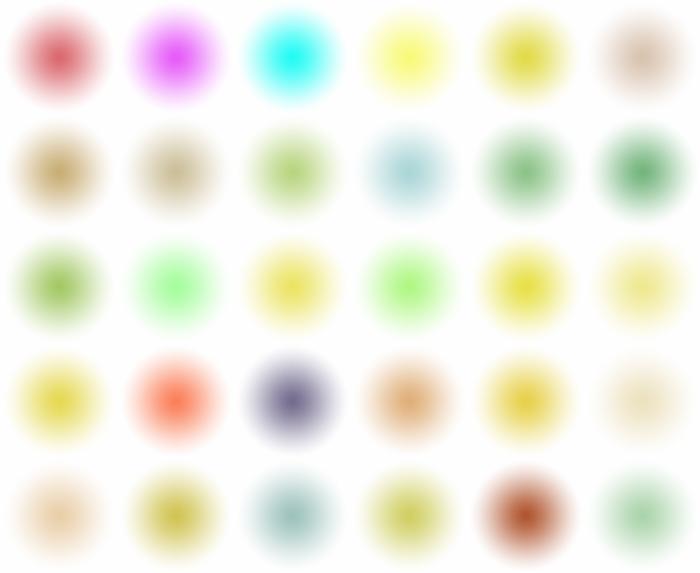 10web.jpg