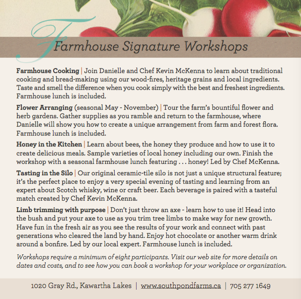 South Pond's Workshops that Work for You!