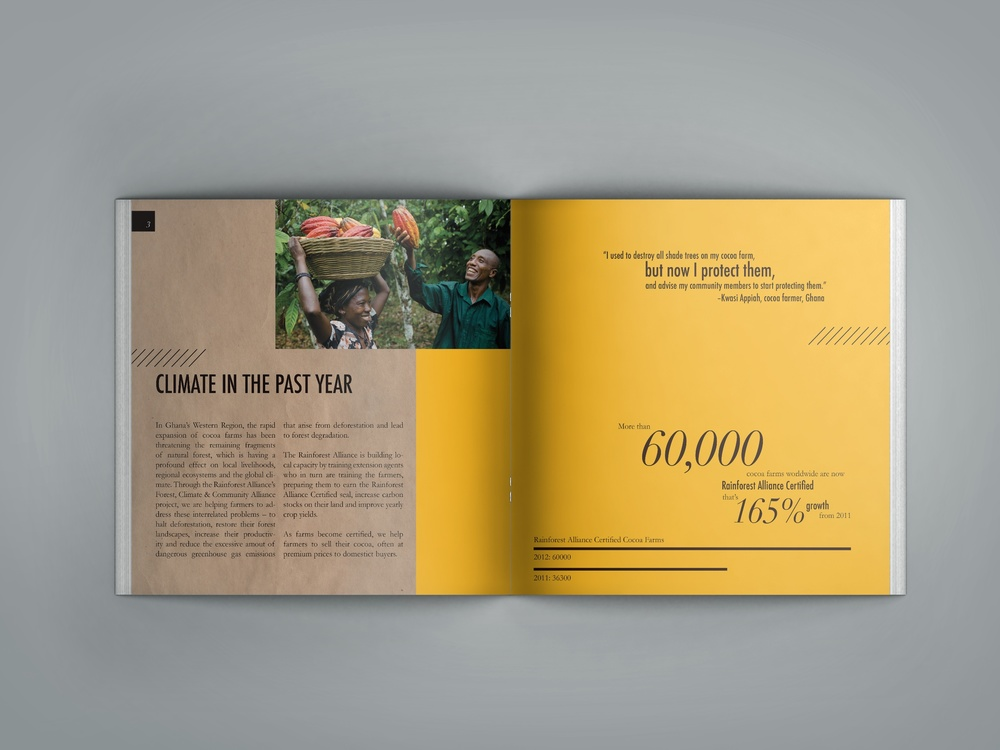 Annual report for an environmental action group