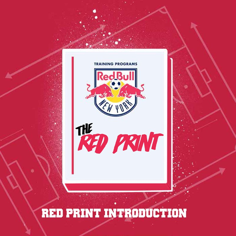 Use the Red Print as a guide to help build your SDP.