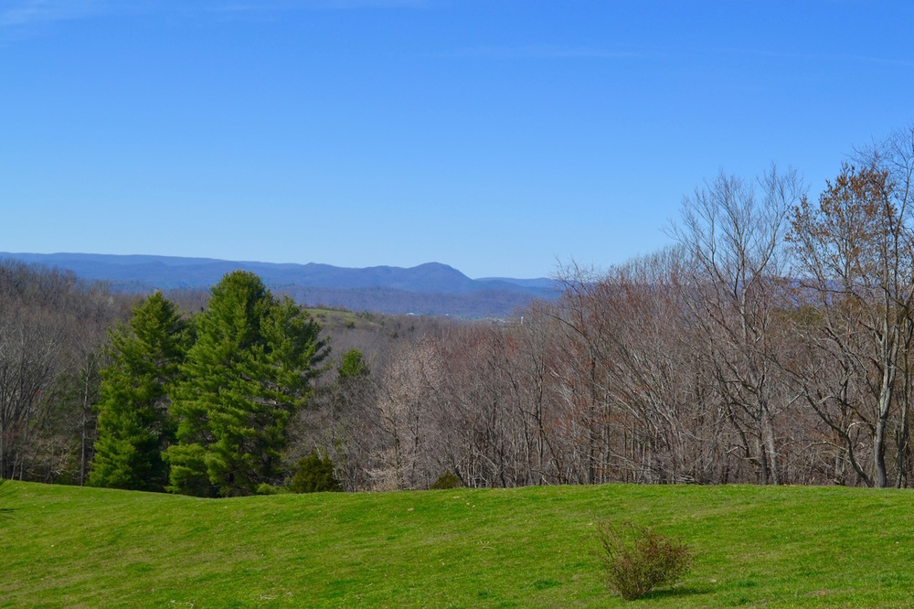 Long Range View-1.jpg