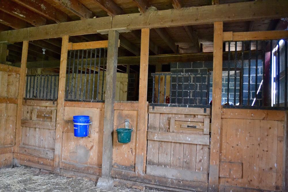 Barn-Horse stalls.jpg