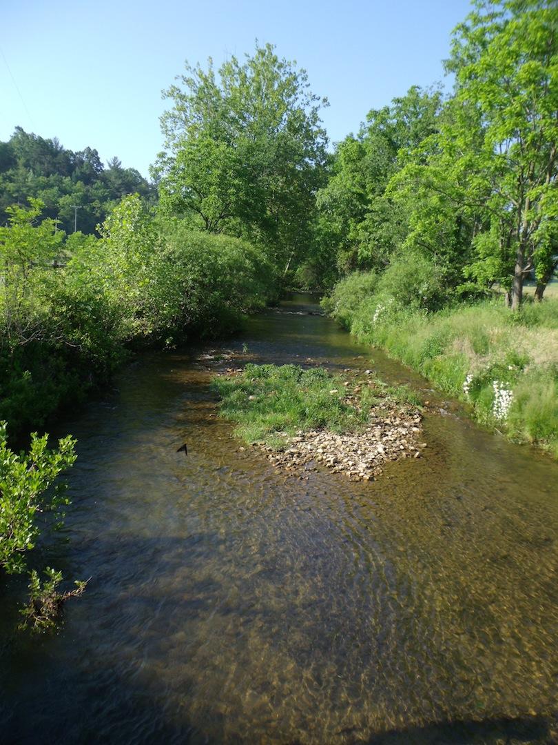 Creek-3.JPG