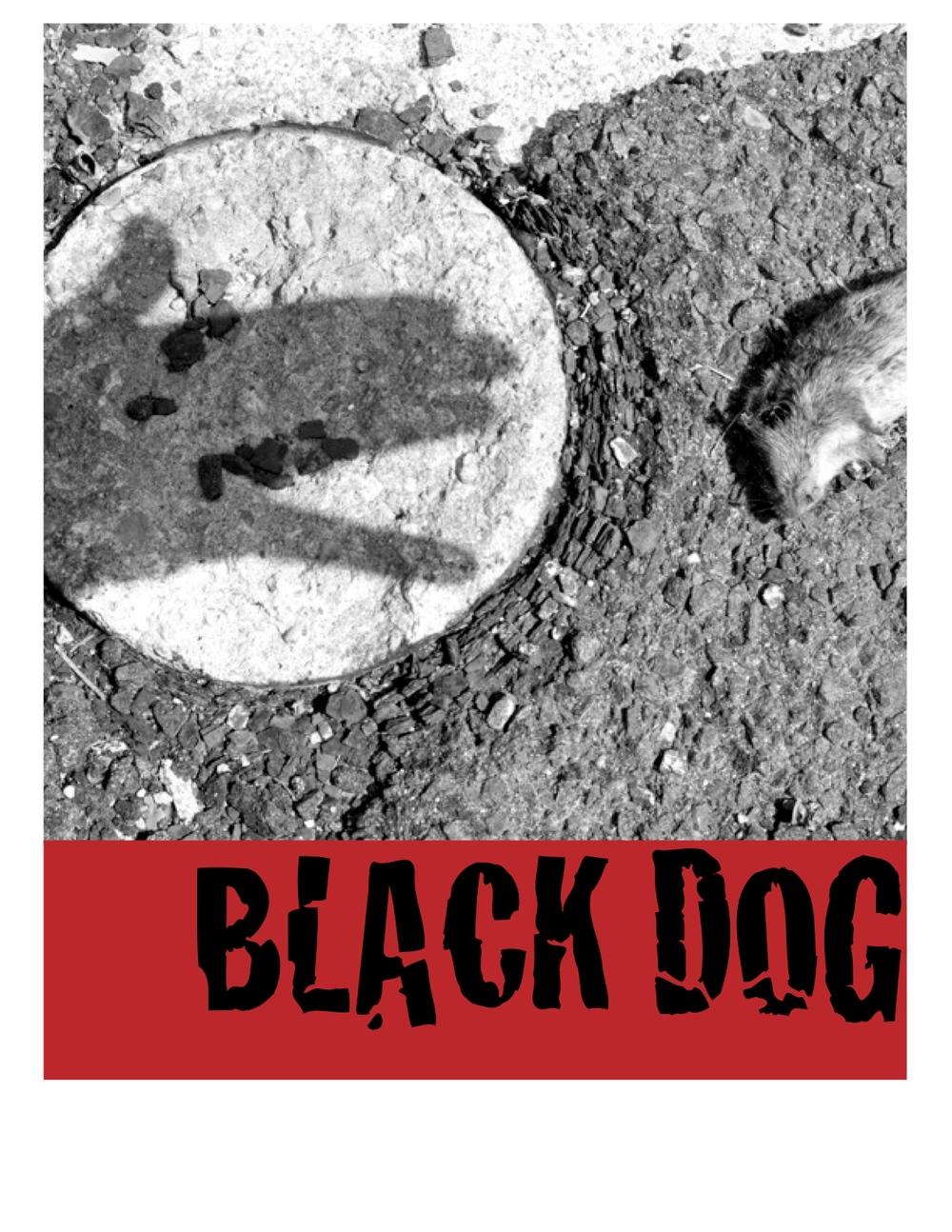 Black Dog 2.jpg