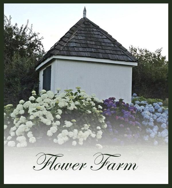 3-flower-farm.jpg