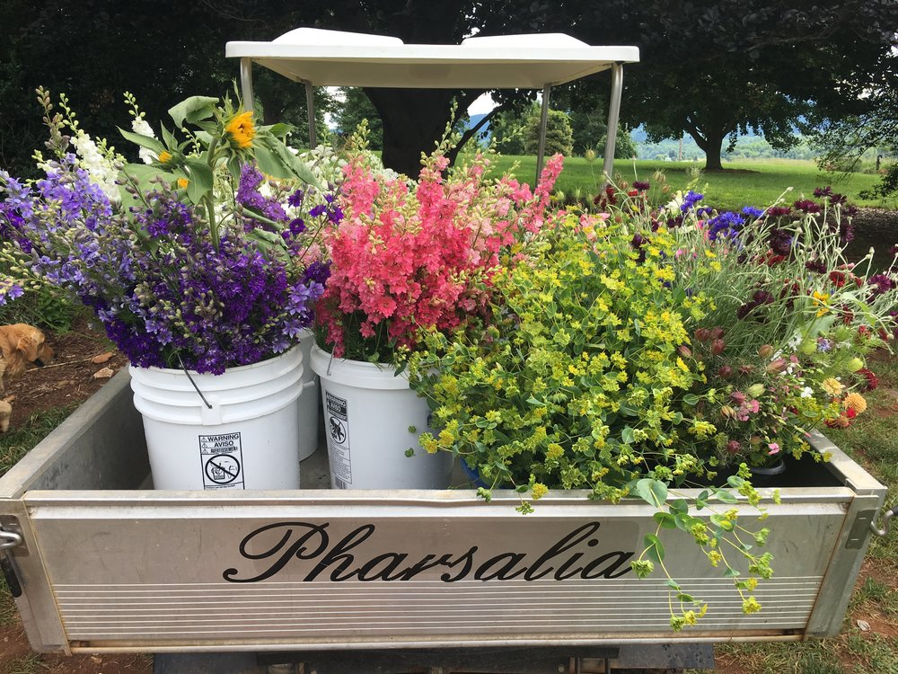 flowers in back of golf cart