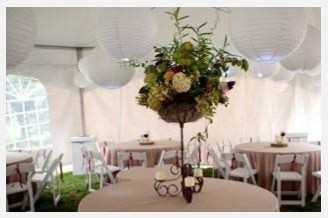 Iron Basket on Stand $75, 6 available - Full of Fresh Pharsalia Flowers