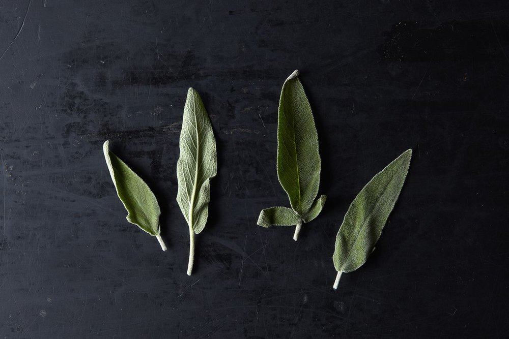 Fresh Sage - Beautiful Garnish!