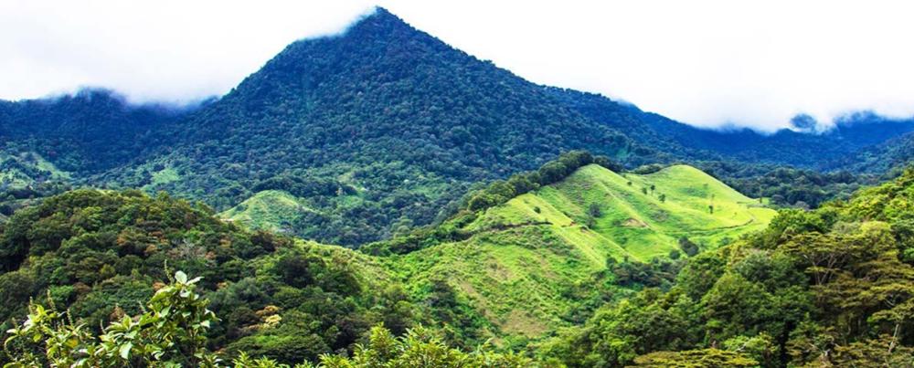 The landscape of Panama  Source: Panama Varietals