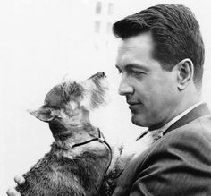 "Rock Hudson (1965) ""A devoted dog lover, Rock Hudson owned 7 dogs of different breeds including Demi Tasse (Haf Cup) The Poodle and an Irish Setter named Tucker. He is seen here with his Schnauzer Murphy in a picture taken during the filming of  STRANGE BEDFELLOWS  in 1965."""