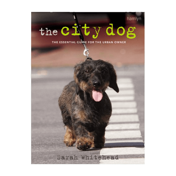 The City Dog (Paperback) - £13.99