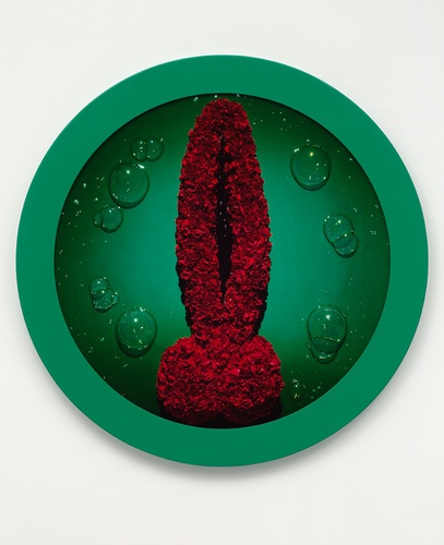 Chadwick wreath to pleasure 12 .JPG