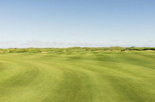 lot-golf.jpg