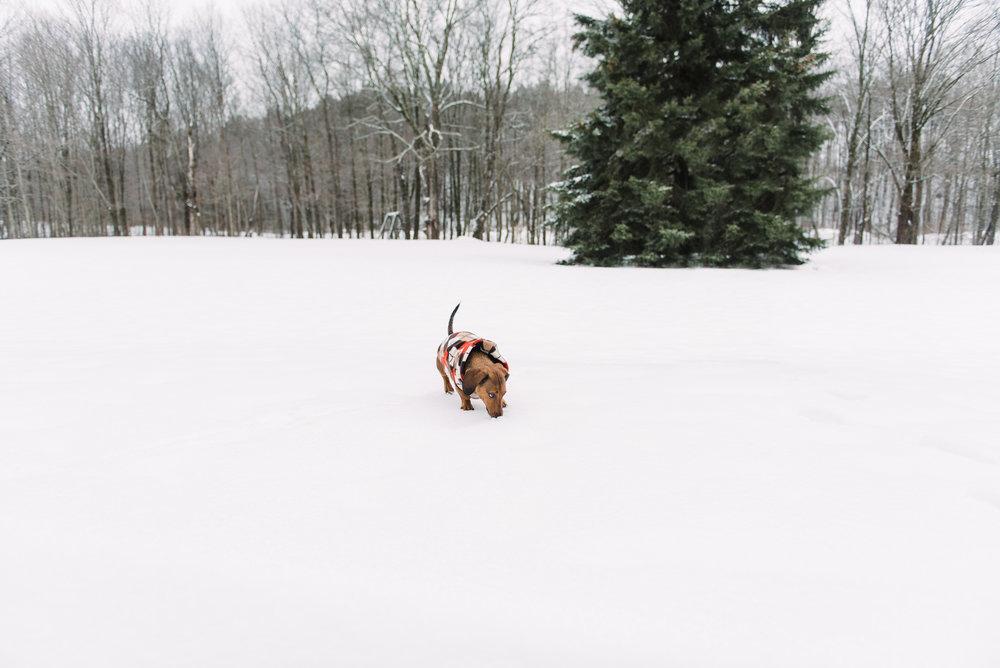 Christmas Blog-2.jpg
