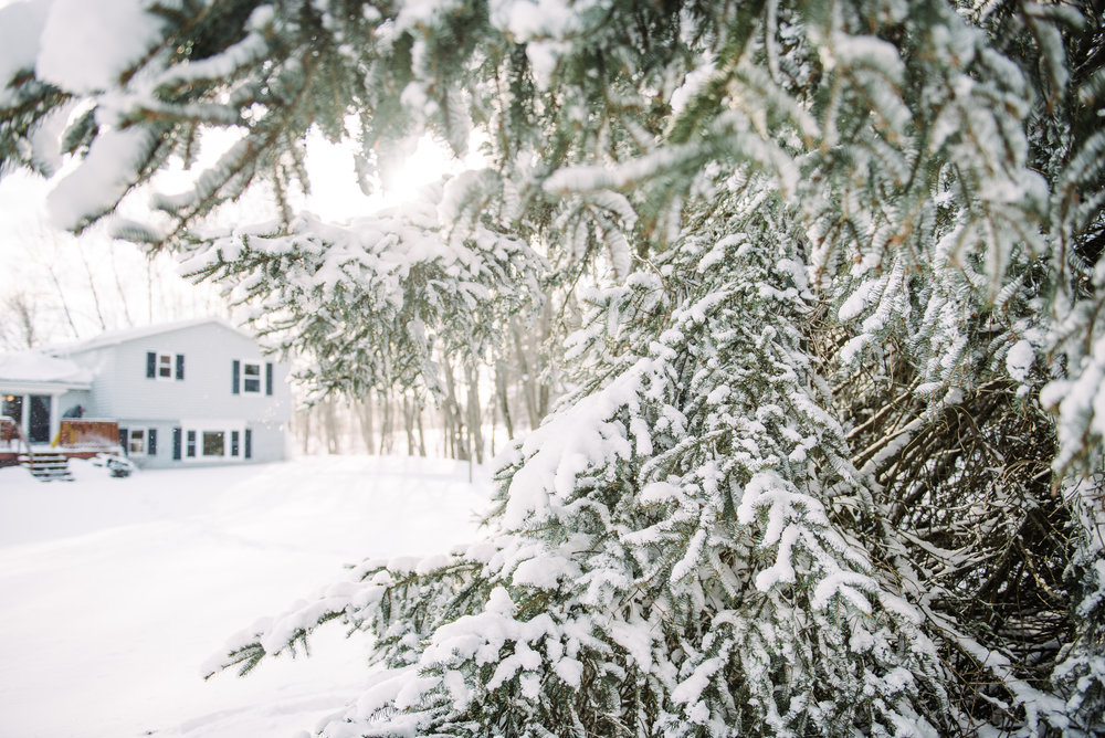 Christmas Blog-9.jpg