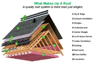 roof & attic.jpg