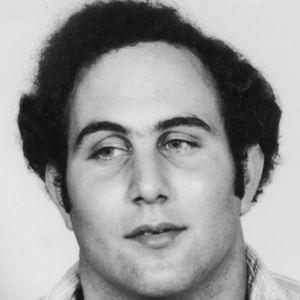 Tim Berkowitz