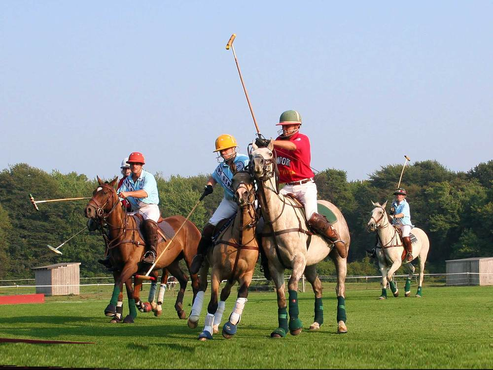 Newport Polo Match.jpg