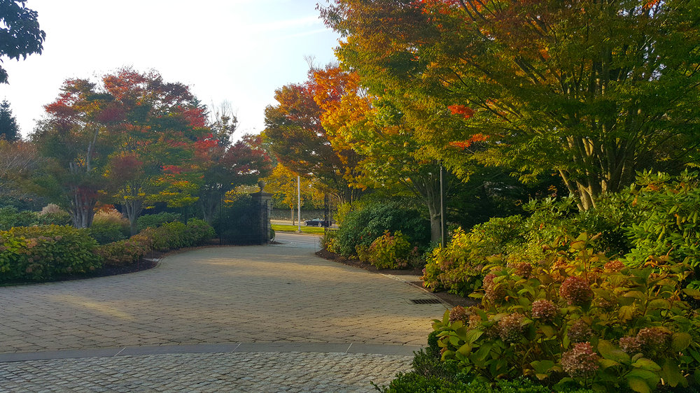 Fall Foliage-Chanler Grounds.jpg