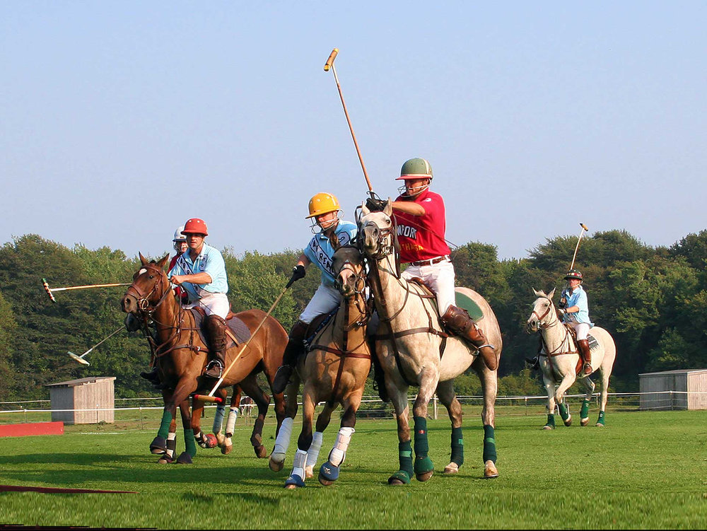Polo Match-Cliff Notes.jpg