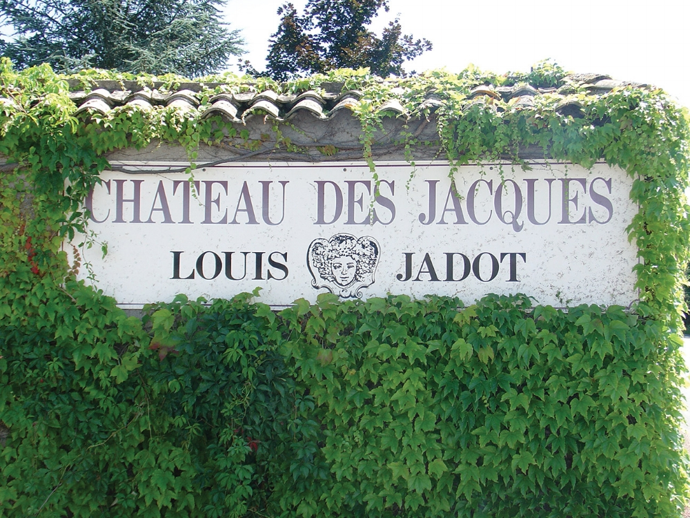 Louis Jadot Winery Sign_Cliff Notes_The Chanler.jpg