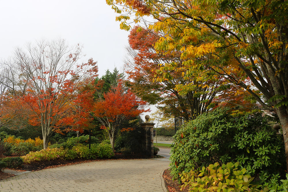 Fall-Foliage_Chanler-Grounds_The-Chanler.jpg