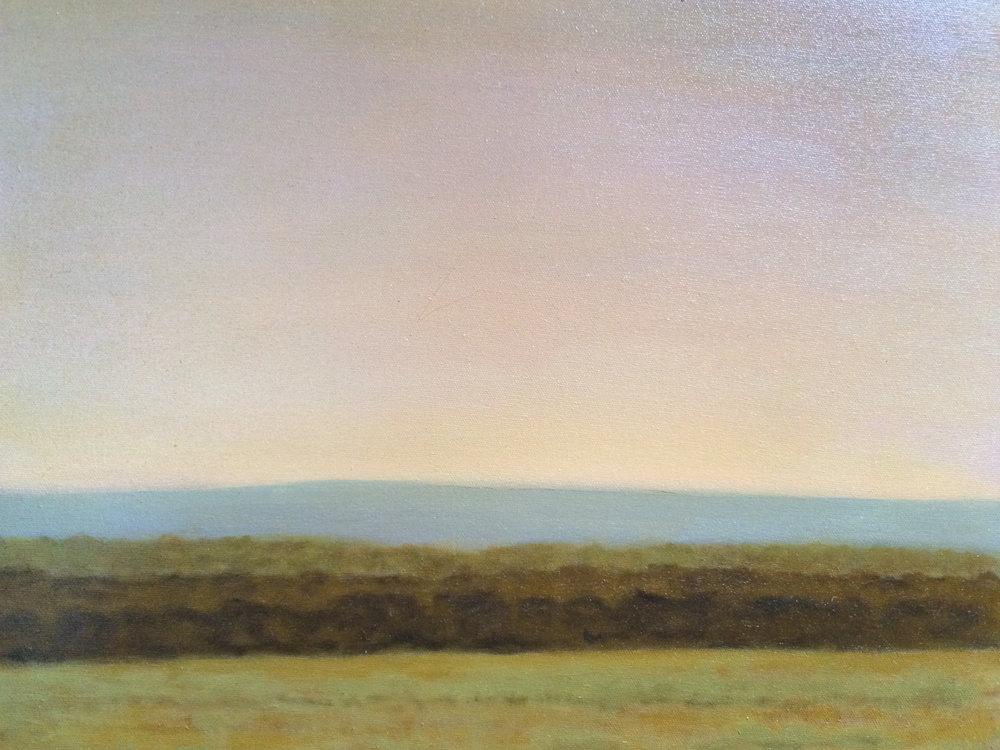 """Cottonwoods Near The Yellowstone"""