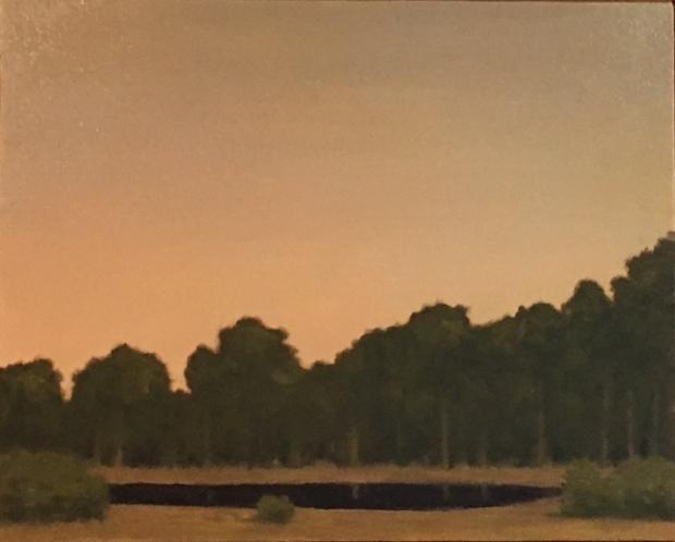 """Pond at Evening"""