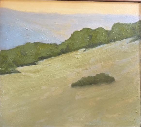 """Hillside Near Bozeman"""
