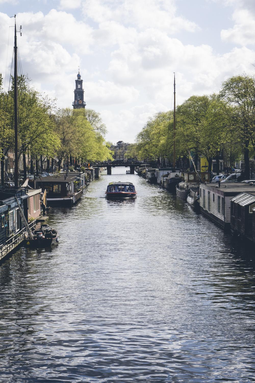 AmsterdamDay4-02028.jpg