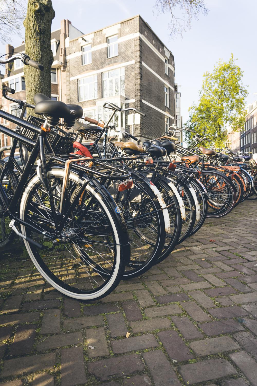 AmsterdamDay5-02091.jpg