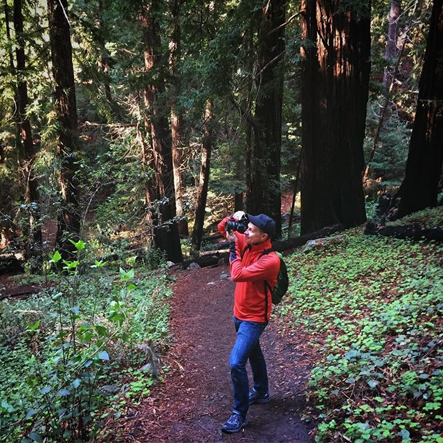 Lots of photography today amongst the giant redwood trees. One of my favorite places to visit in the US.